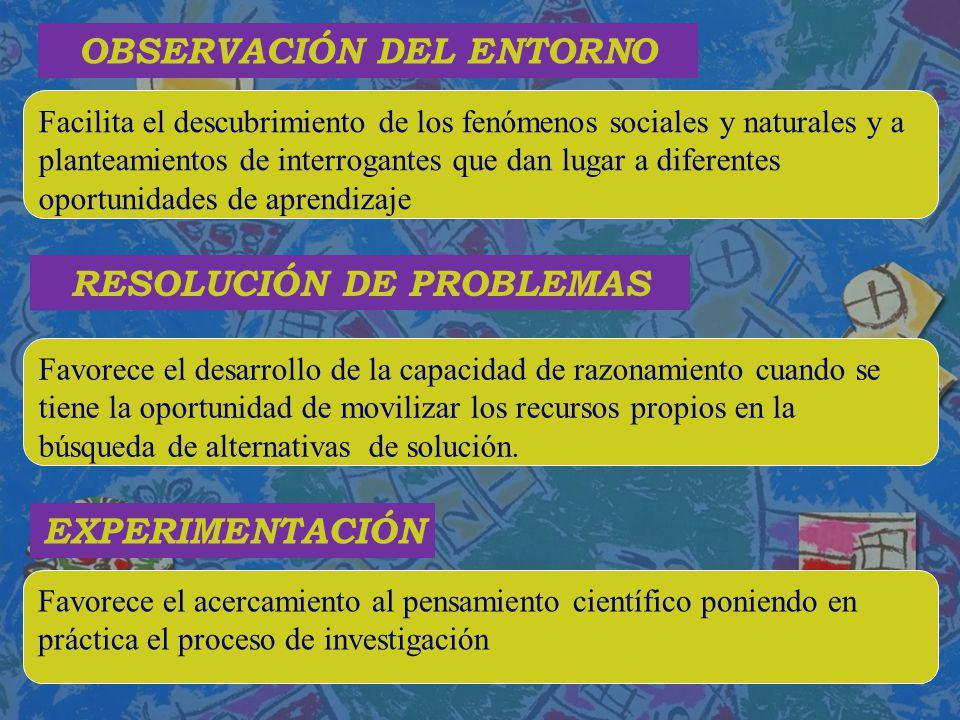 OBSERVACIÓN DEL ENTORNO RESOLUCIÓN DE PROBLEMAS