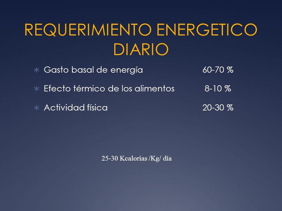 REQUERIMIENTO ENERGETICO DIARIO