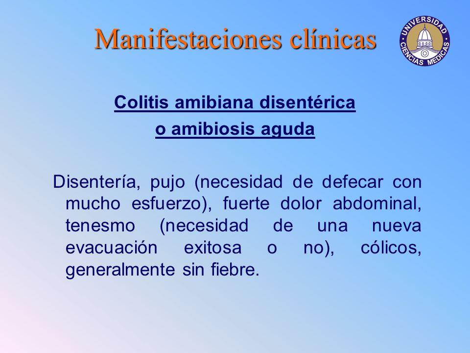 Colitis amibiana disentérica
