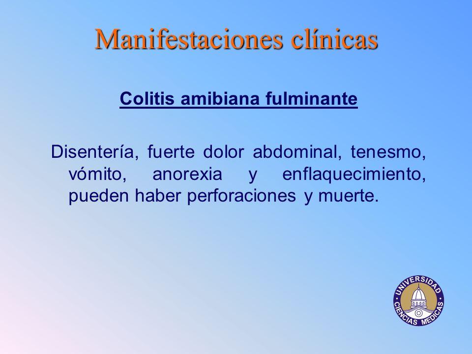 Colitis amibiana fulminante
