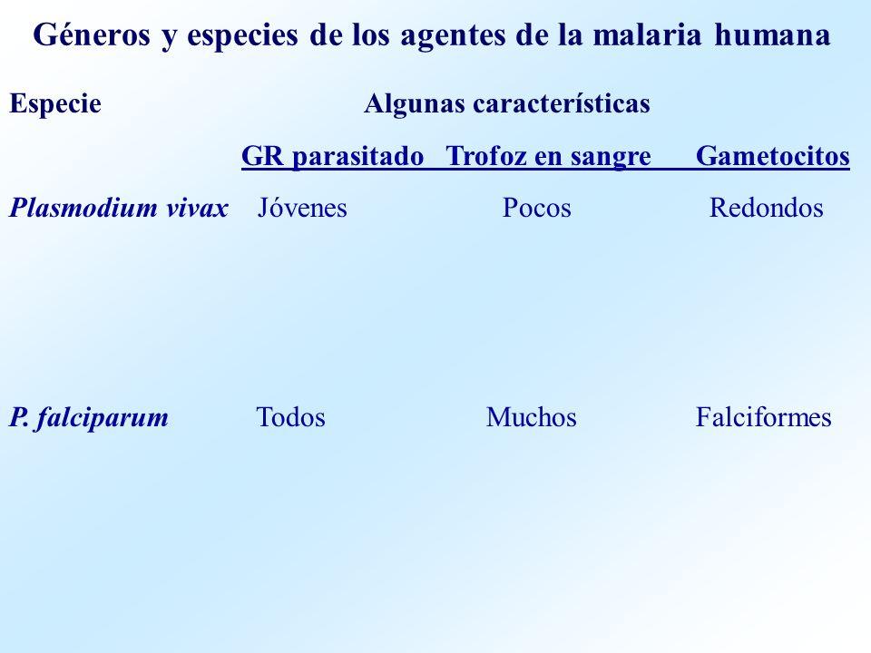 Géneros y especies de los agentes de la malaria humana