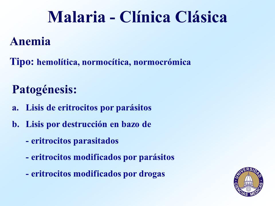 Malaria - Clínica Clásica