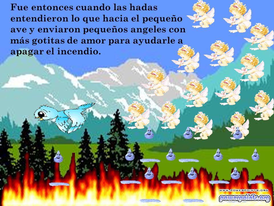 Fue entonces cuando las hadas entendieron lo que hacia el pequeño ave y enviaron pequeños angeles con más gotitas de amor para ayudarle a apagar el incendio.