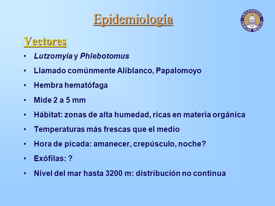 Epidemiología Vectores Lutzomyia y Phlebotomus