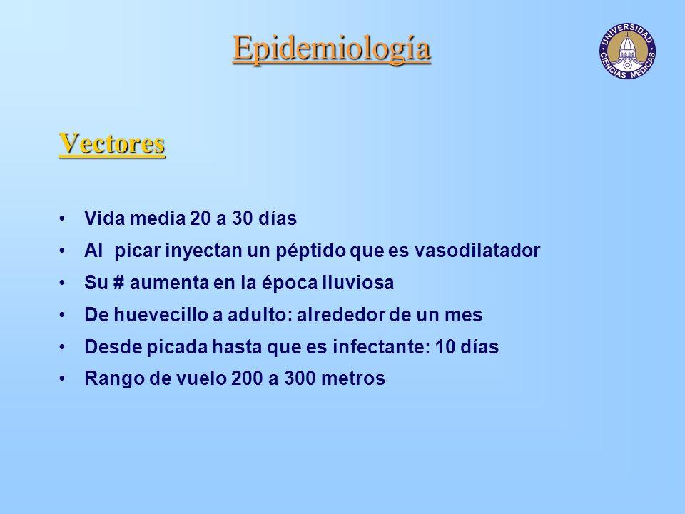 Epidemiología Vectores Vida media 20 a 30 días