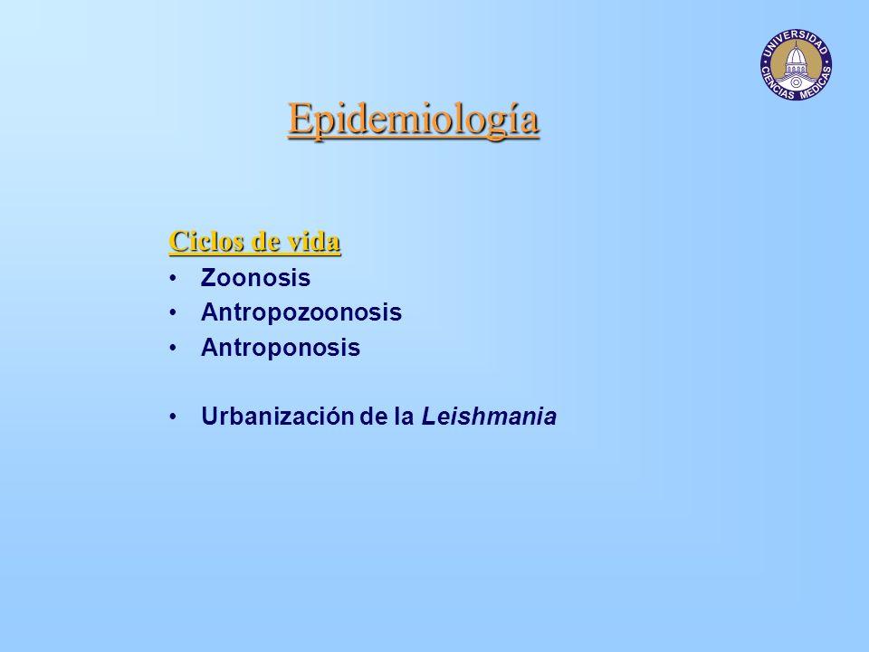 Epidemiología Ciclos de vida Zoonosis Antropozoonosis Antroponosis