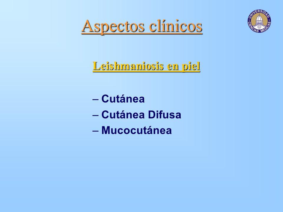 Aspectos clínicos Leishmaniosis en piel Cutánea Cutánea Difusa