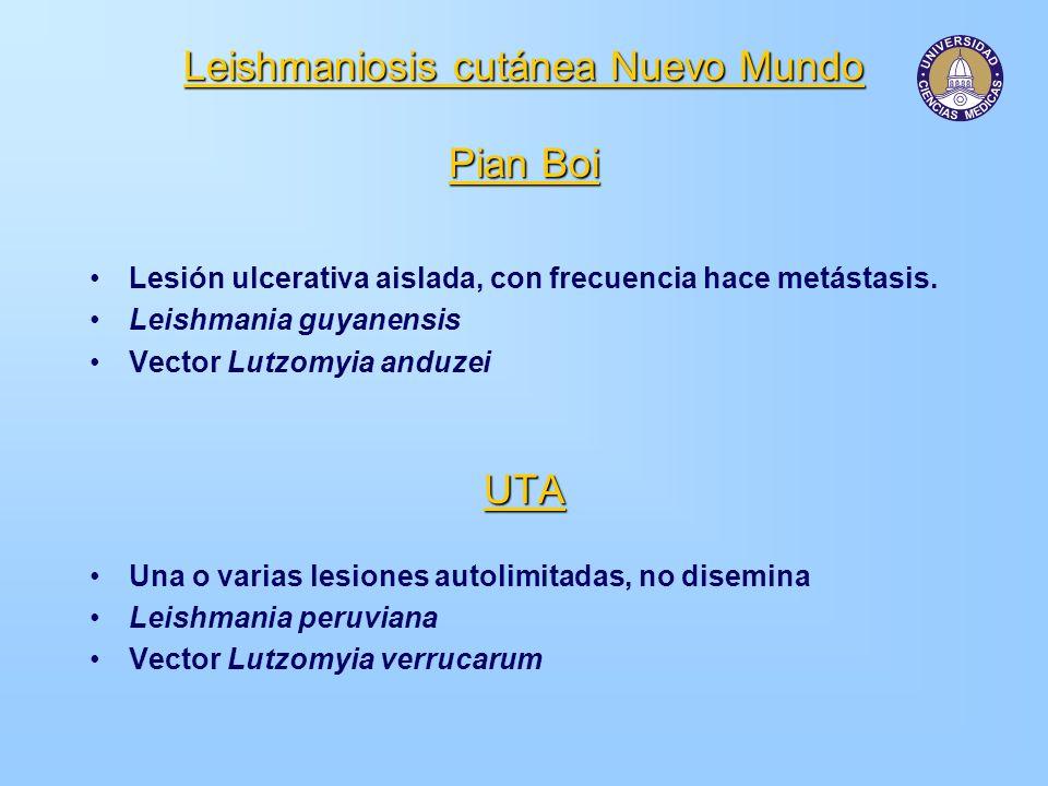 Leishmaniosis cutánea Nuevo Mundo