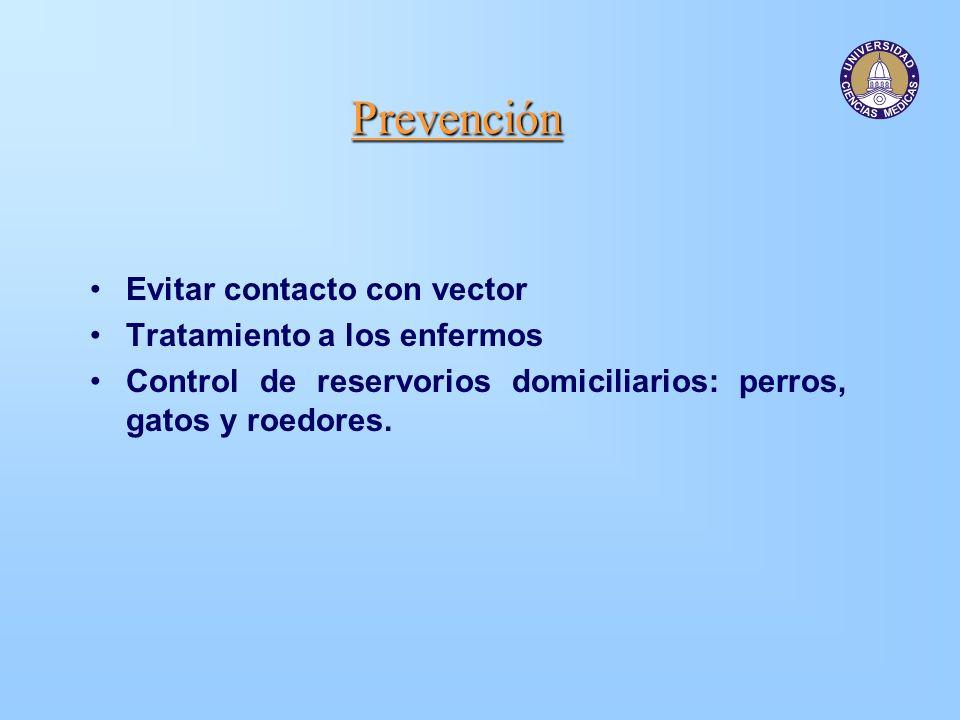 Prevención Evitar contacto con vector Tratamiento a los enfermos