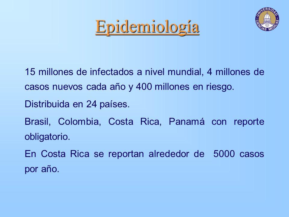 Epidemiología 15 millones de infectados a nivel mundial, 4 millones de casos nuevos cada año y 400 millones en riesgo.