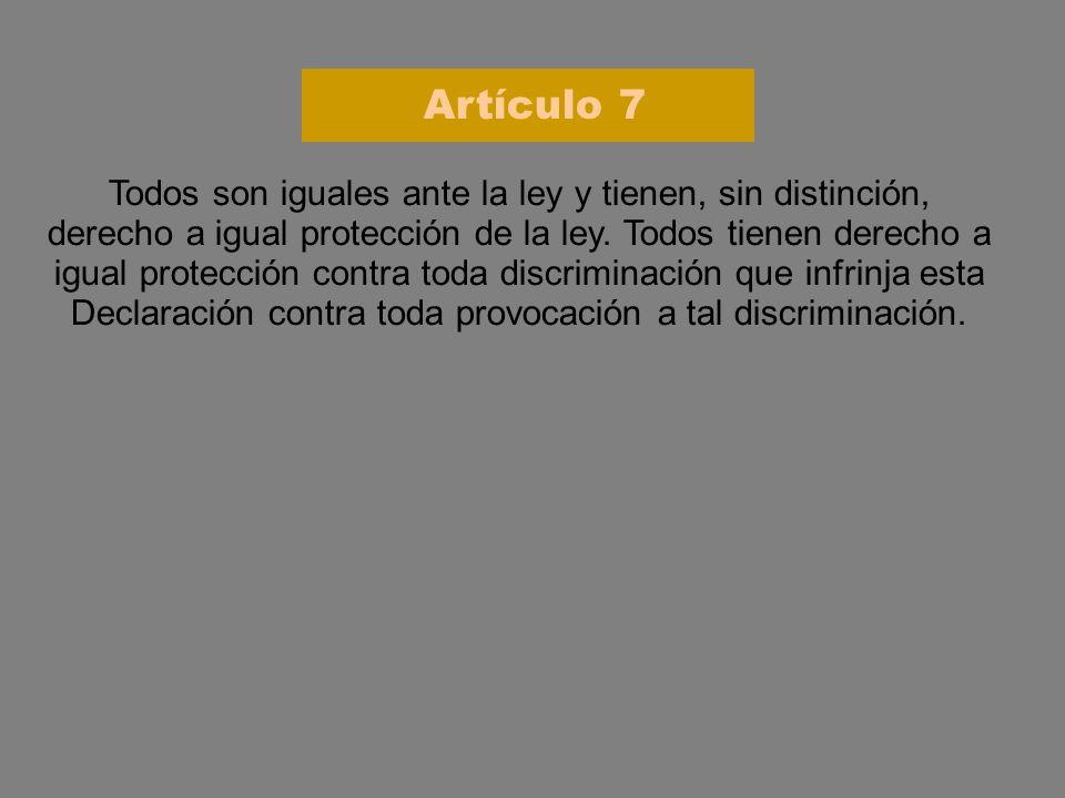 Artículo 7