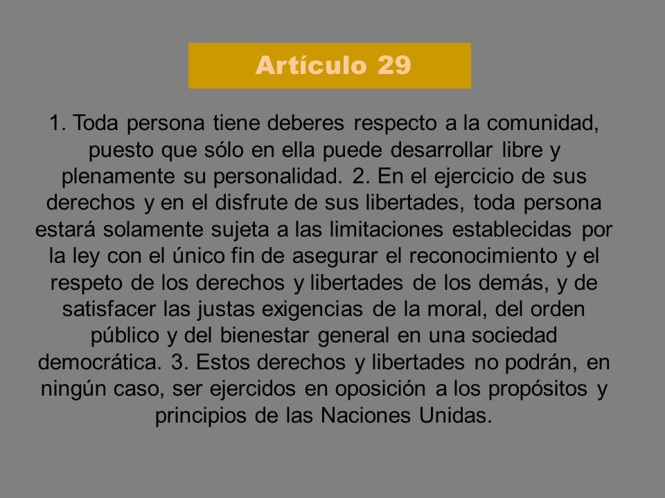 Artículo 29