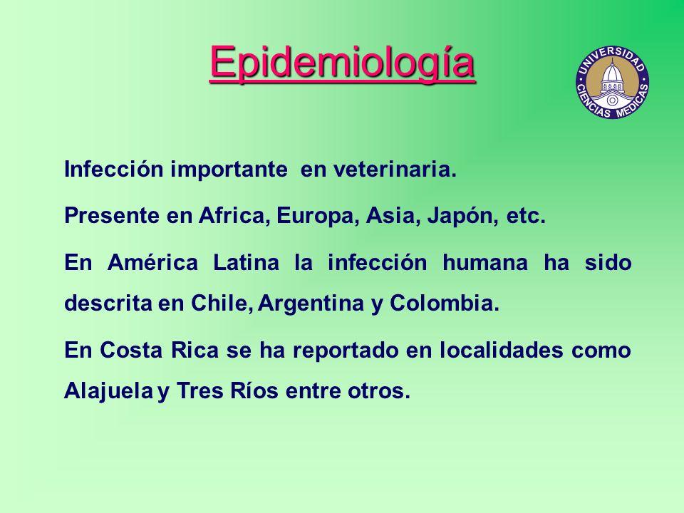 Epidemiología Infección importante en veterinaria.