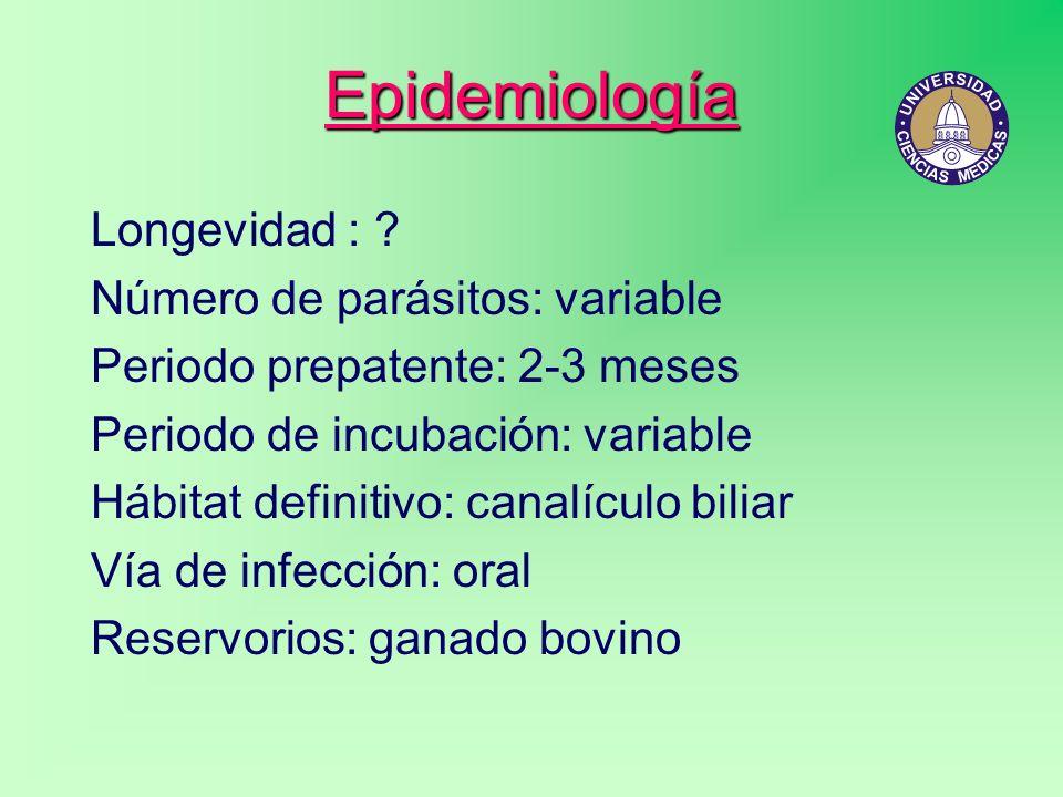 Epidemiología Longevidad : Número de parásitos: variable