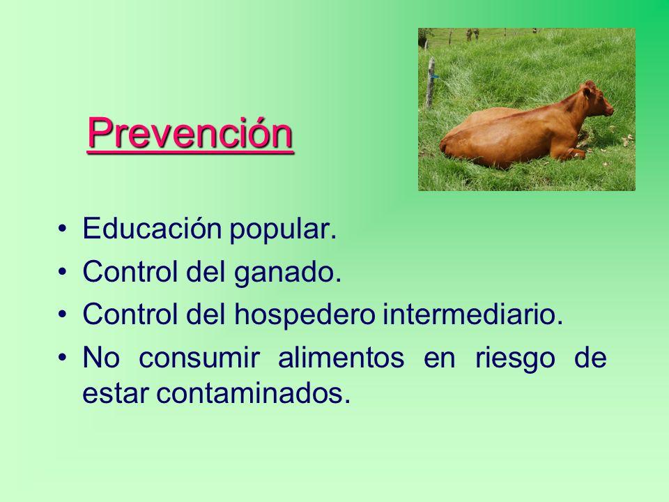 Prevención Educación popular. Control del ganado.