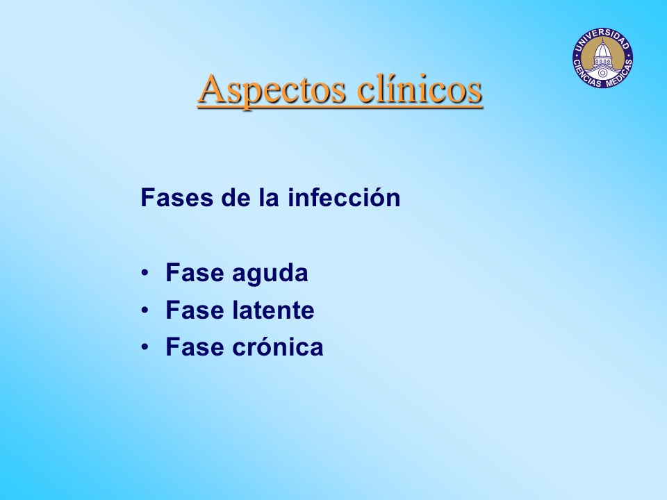 Aspectos clínicos Fases de la infección Fase aguda Fase latente