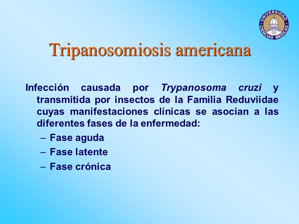 Tripanosomiosis americana