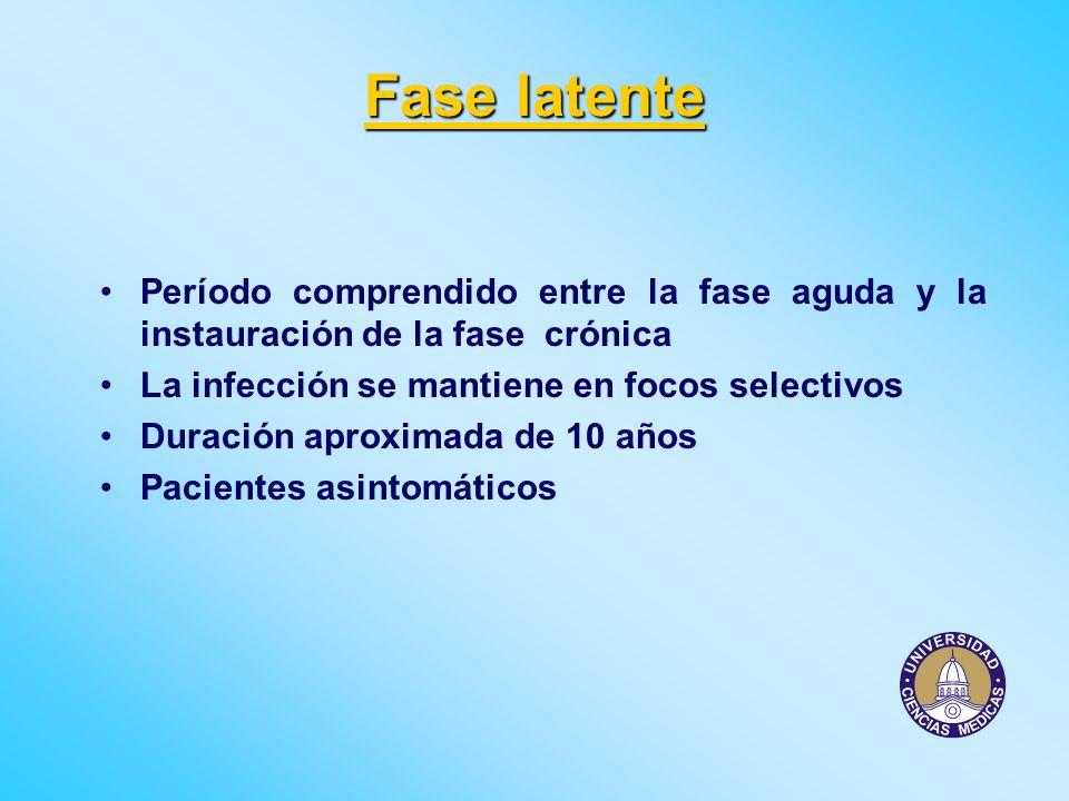 Fase latente Período comprendido entre la fase aguda y la instauración de la fase crónica. La infección se mantiene en focos selectivos.