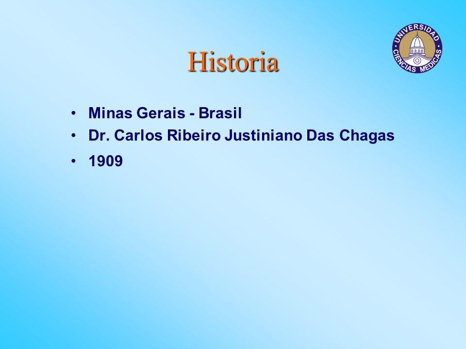 Historia Minas Gerais - Brasil