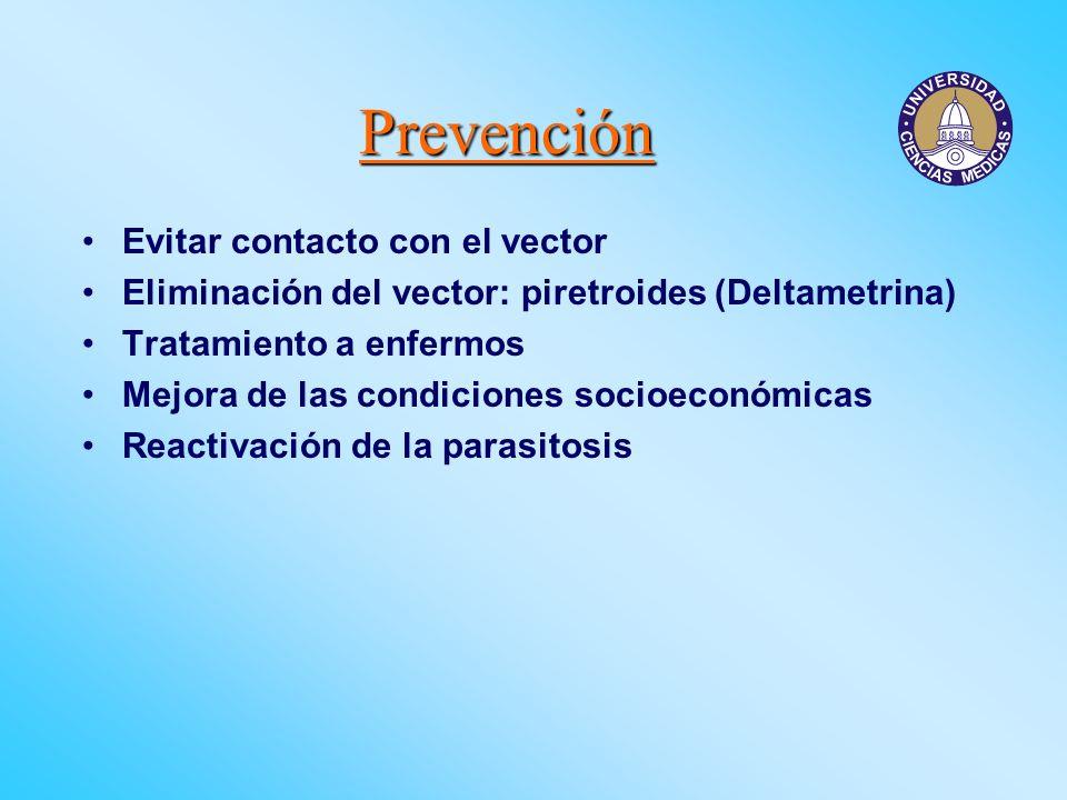 Prevención Evitar contacto con el vector