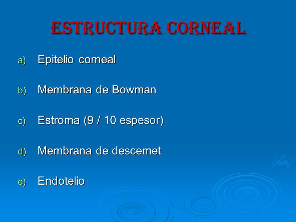 ESTRUCTURA CORNEAL Epitelio corneal Membrana de Bowman
