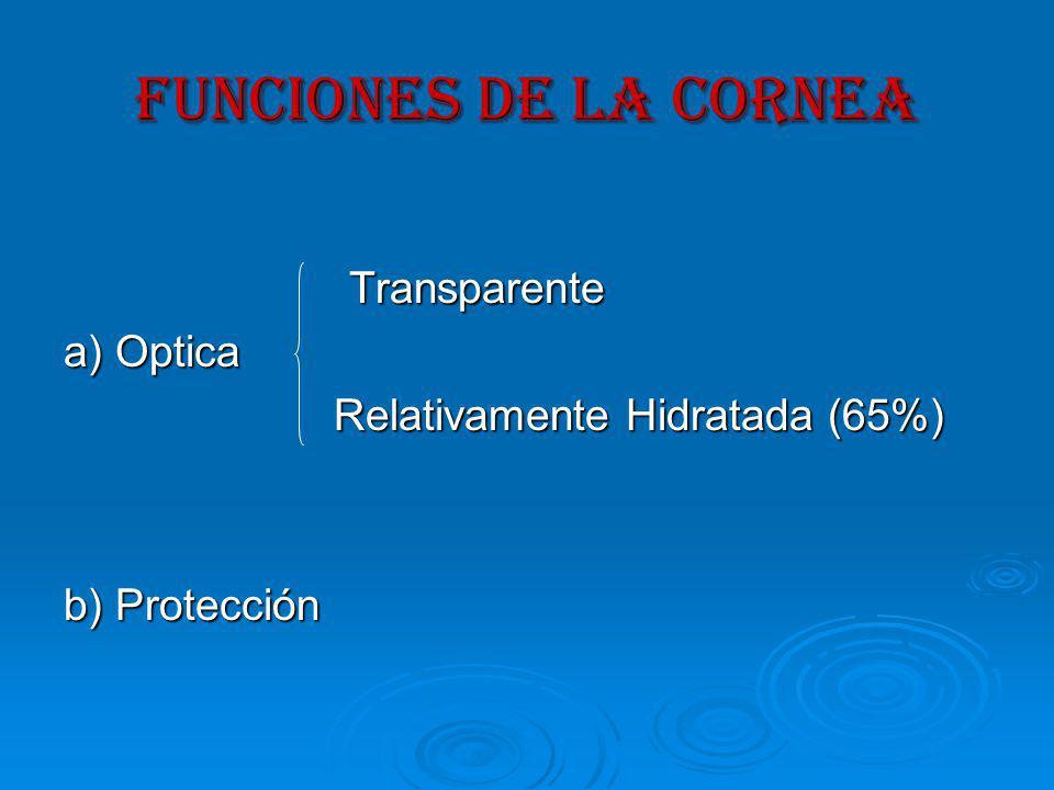 FUNCIONES DE LA CORNEA Transparente a) Optica