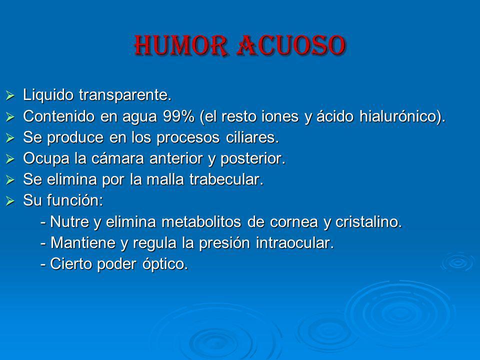 HUMOR ACUOSO Liquido transparente.