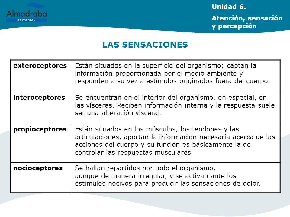 LAS SENSACIONES Unidad 6. Atención, sensación y percepción