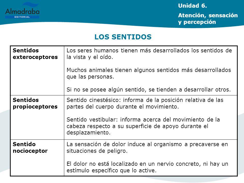 LOS SENTIDOS Unidad 6. Atención, sensación y percepción