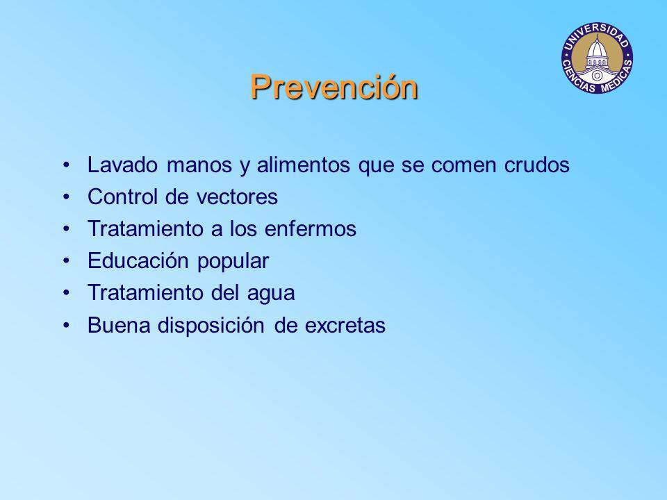 Prevención Lavado manos y alimentos que se comen crudos