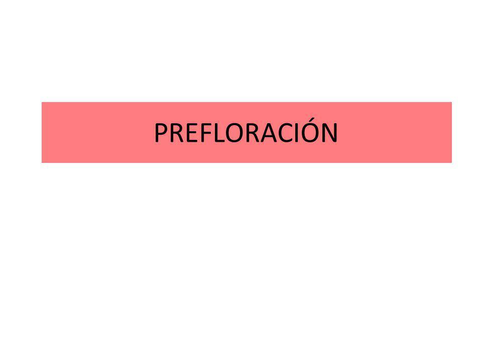 PREFLORACIÓN