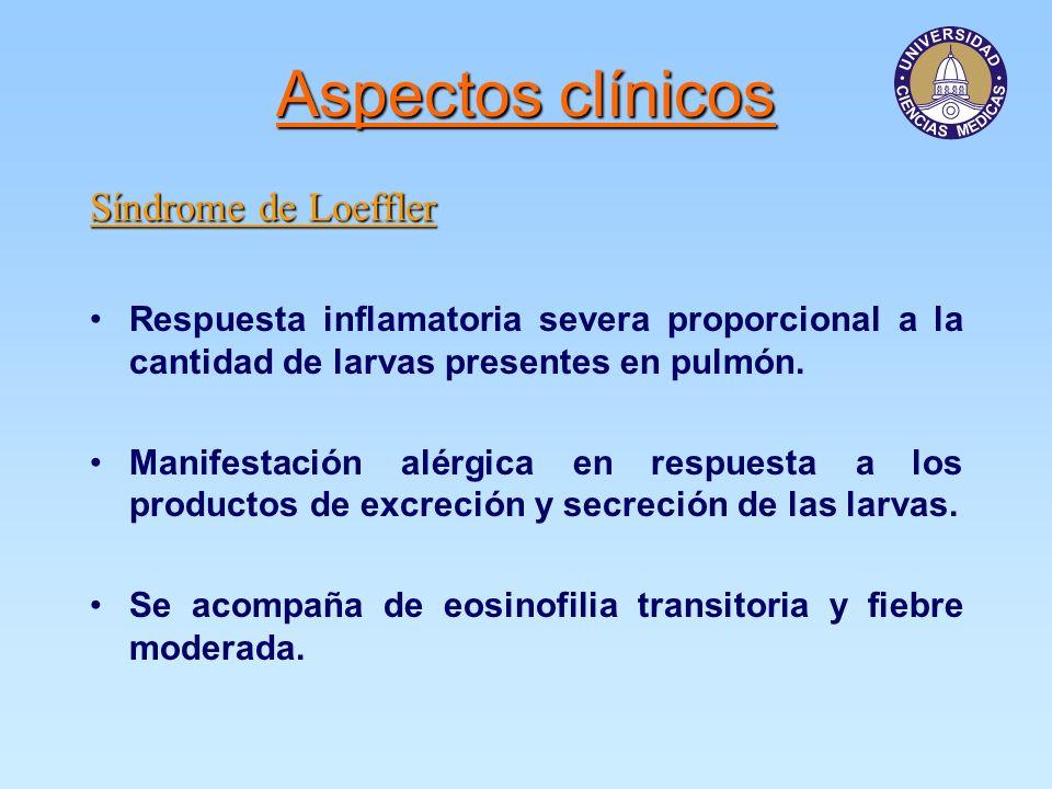 Aspectos clínicos Síndrome de Loeffler