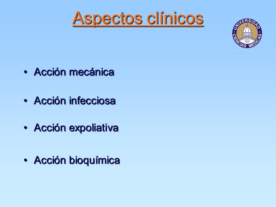 Aspectos clínicos Acción mecánica Acción infecciosa Acción expoliativa