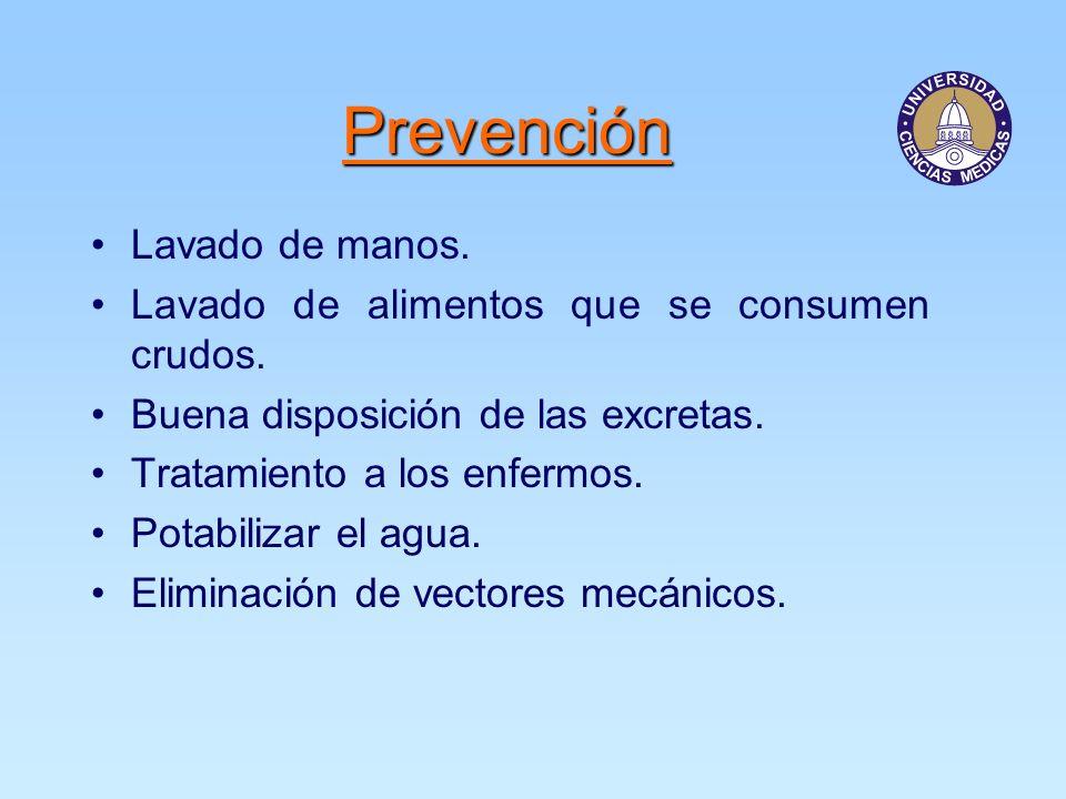 Prevención Lavado de manos.