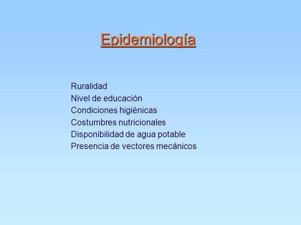Epidemiología Ruralidad Nivel de educación Condiciones higiénicas