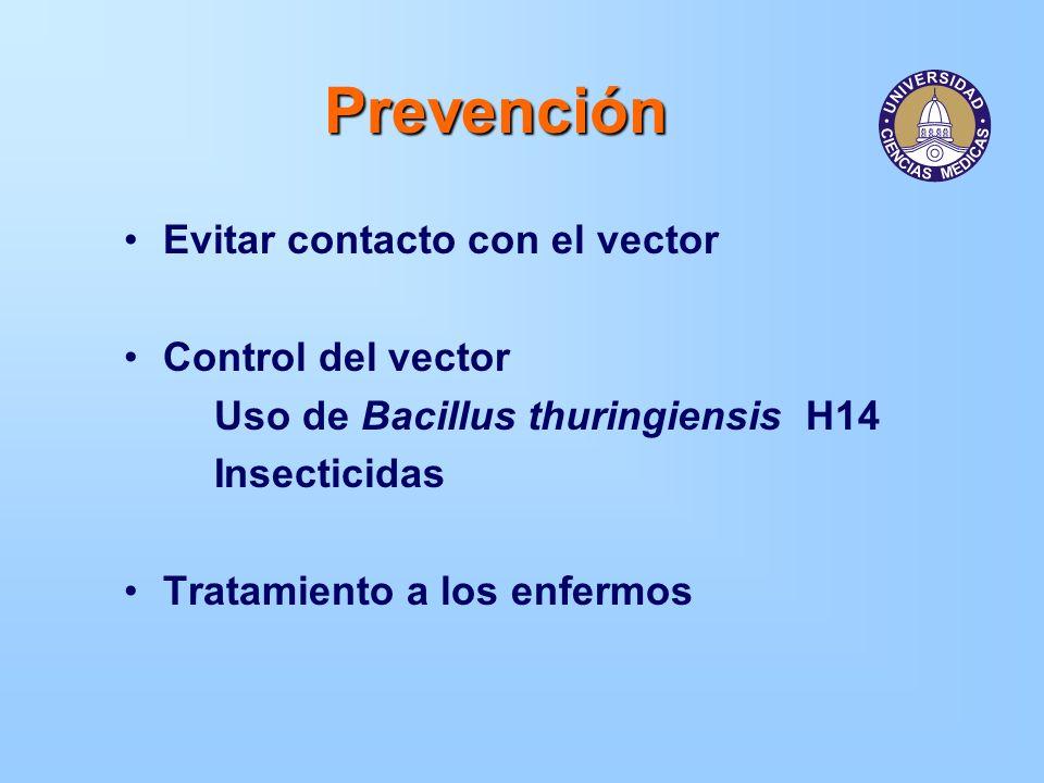 Prevención Evitar contacto con el vector Control del vector