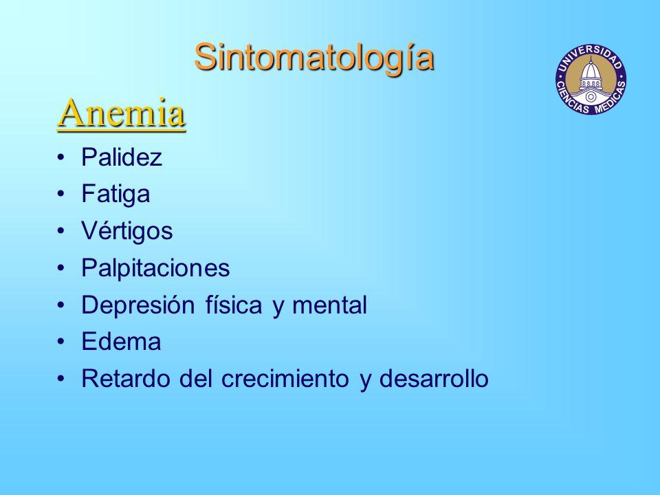 Anemia Sintomatología Palidez Fatiga Vértigos Palpitaciones