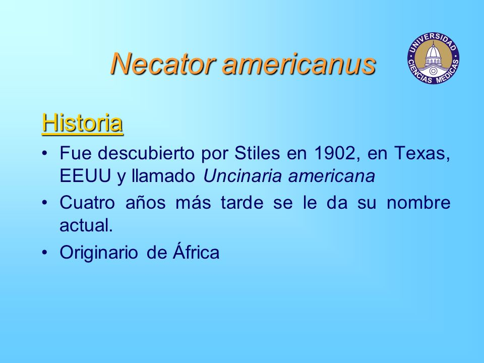 Necator americanus Historia