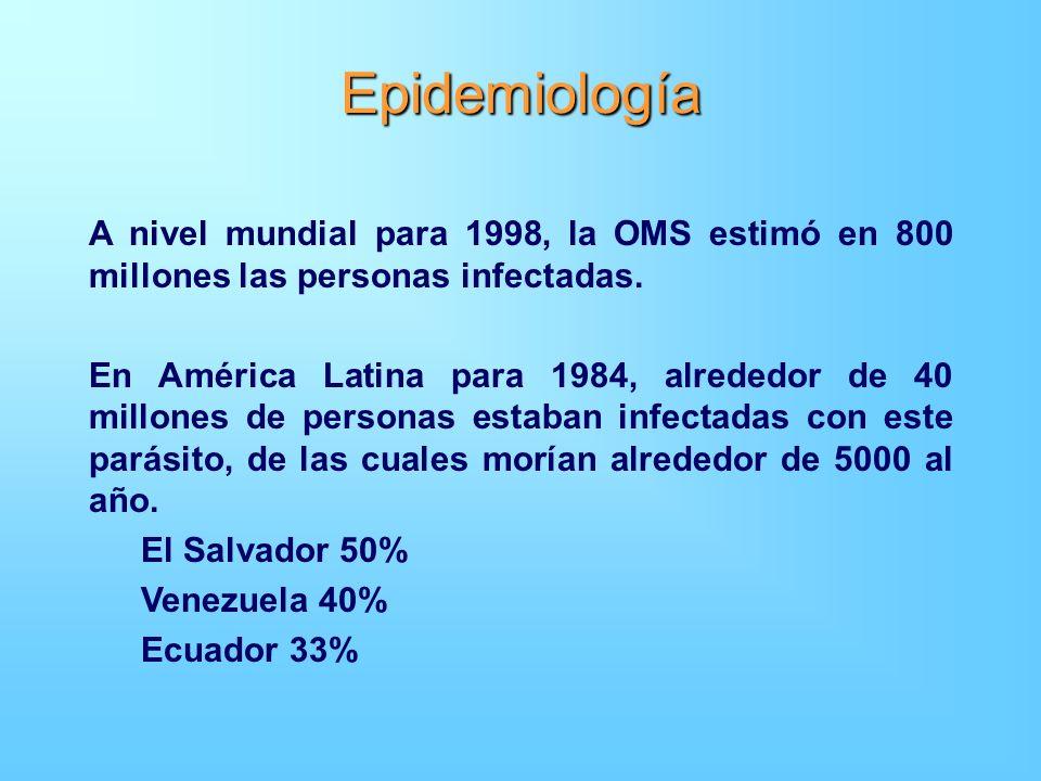 Epidemiología A nivel mundial para 1998, la OMS estimó en 800 millones las personas infectadas.