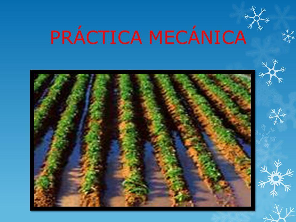 PRÁCTICA MECÁNICA