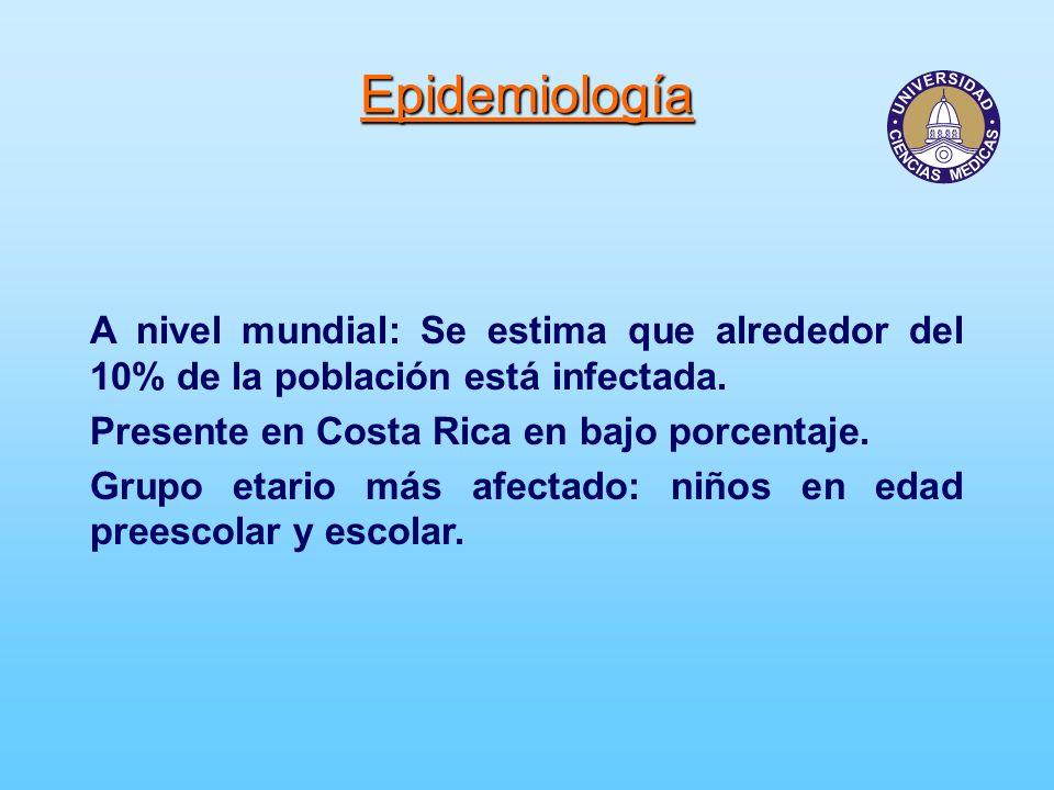Epidemiología A nivel mundial: Se estima que alrededor del 10% de la población está infectada. Presente en Costa Rica en bajo porcentaje.