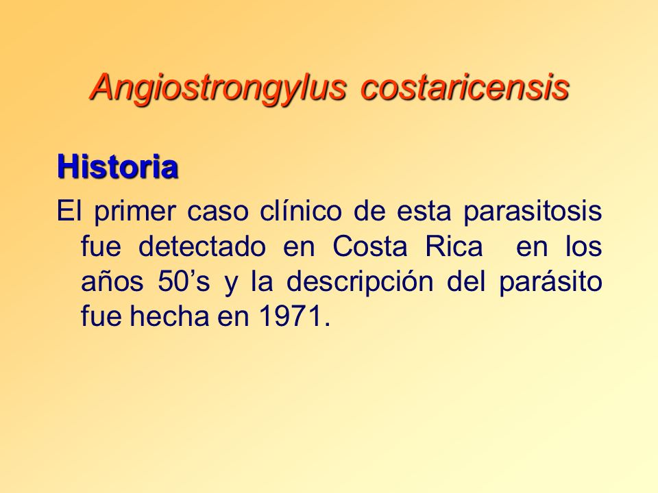 Angiostrongylus costaricensis