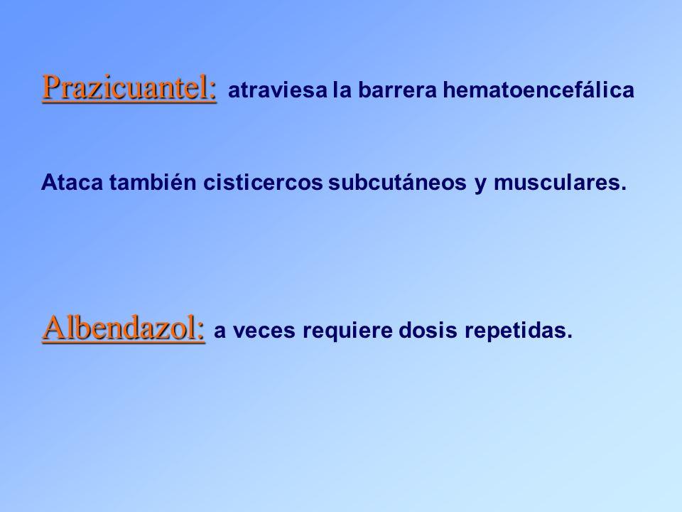 Prazicuantel: atraviesa la barrera hematoencefálica