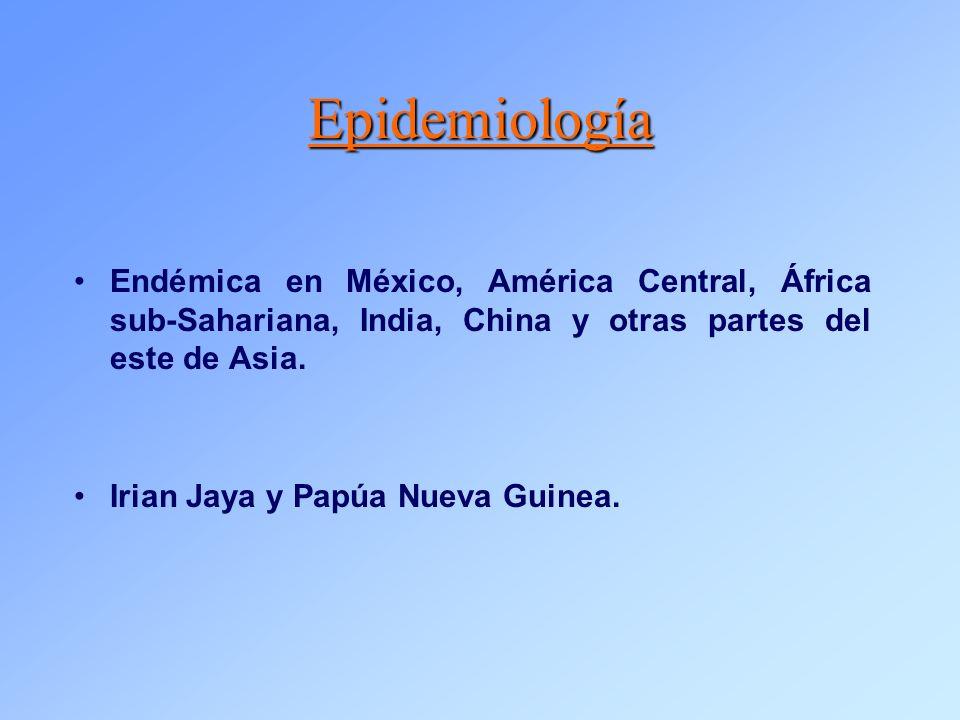 Epidemiología Endémica en México, América Central, África sub-Sahariana, India, China y otras partes del este de Asia.
