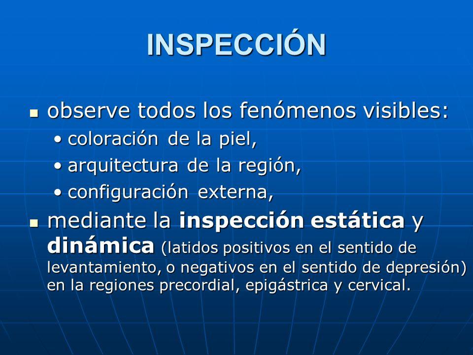 INSPECCIÓN observe todos los fenómenos visibles: