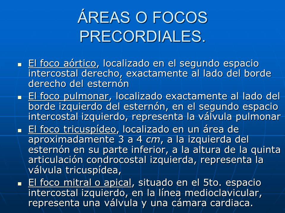 ÁREAS O FOCOS PRECORDIALES.