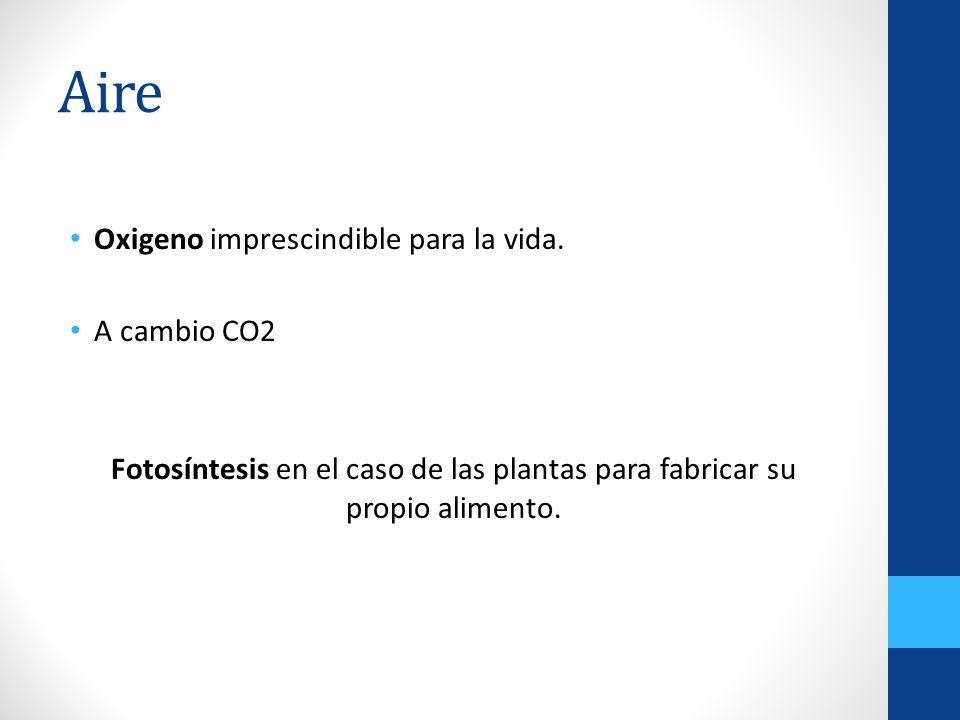 Aire Oxigeno imprescindible para la vida. A cambio CO2