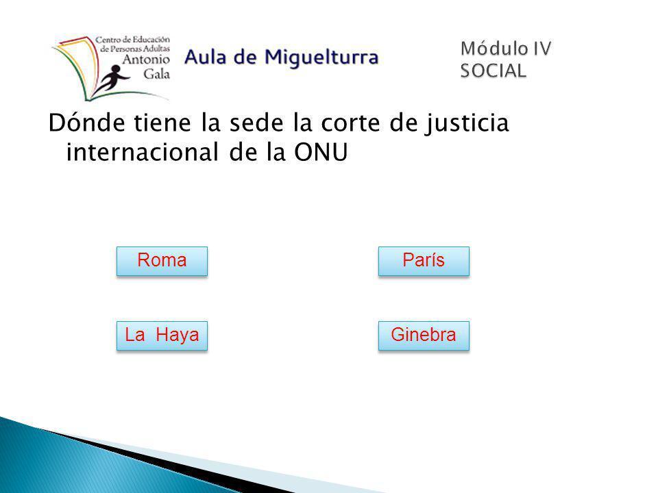 Dónde tiene la sede la corte de justicia internacional de la ONU