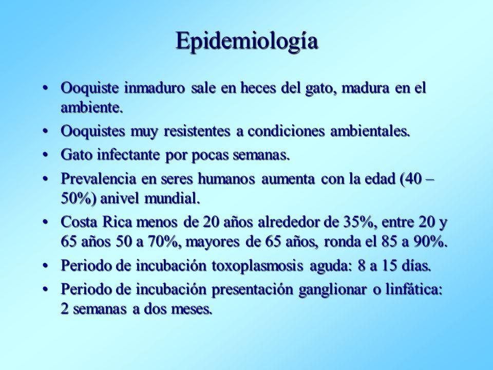 Epidemiología Ooquiste inmaduro sale en heces del gato, madura en el ambiente. Ooquistes muy resistentes a condiciones ambientales.