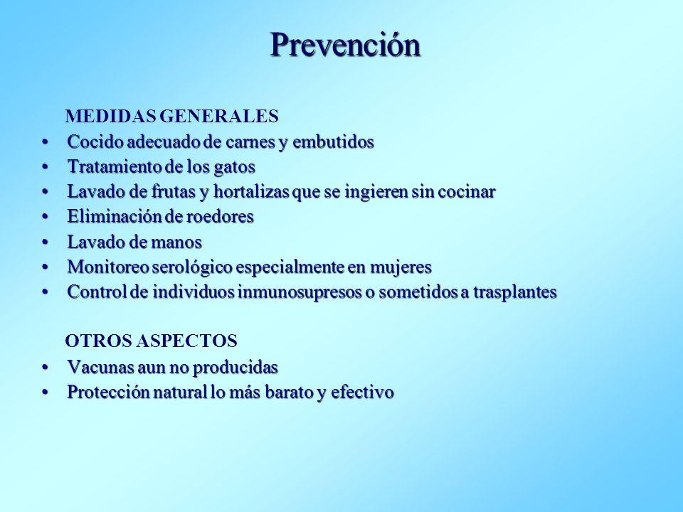 Prevención MEDIDAS GENERALES Cocido adecuado de carnes y embutidos
